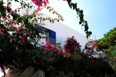 La Sirenetta Park Hotel - Stromboli - Foto 9