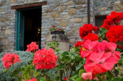 Terre di Himera - Buonfornello - Foto 1