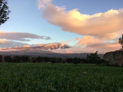La Fucina di Vulcano - Bronte - Foto 7