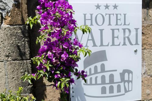 1维亚迪瓦雷利酒店
