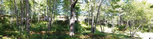 Roseway River Cottages