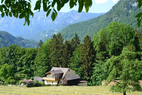 Ferienwohnung Alpenwiesen