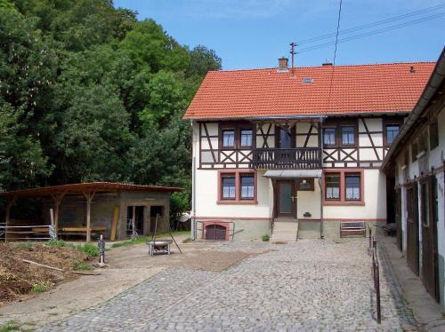 Pferdehof und Wanderreitstation Dorsam