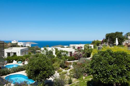 Aegean Hills