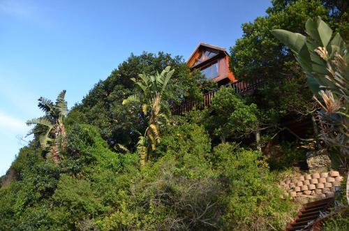 Ballots Tree House