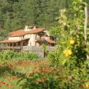 Pastoral Vadi, Türkiye