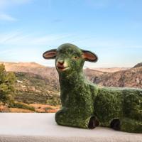 阿尔普哈拉绿羊酒店