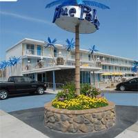 蓝色棕榈汽车旅馆