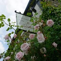 The Mulberry Inn