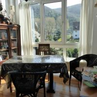 Ferienhaus Rheinromantik