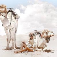 阿里与萨拉的沙漠宫殿豪华帐篷