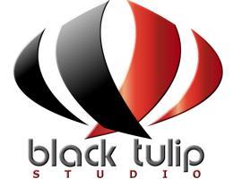 Black Tulip Studio, ליידן