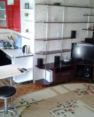 Apartment on Karelskaya 75