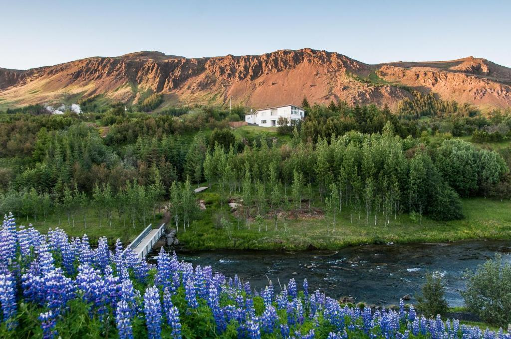 Iceland's Guesthouse, Хверагерди