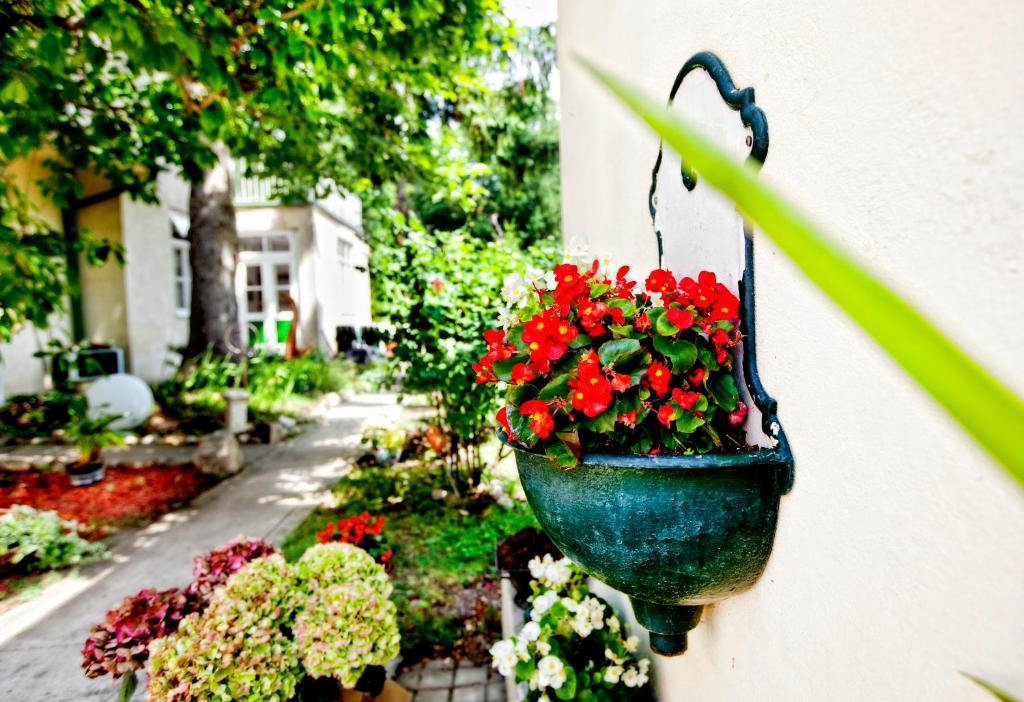 Pension Margit, Баден, Австрия