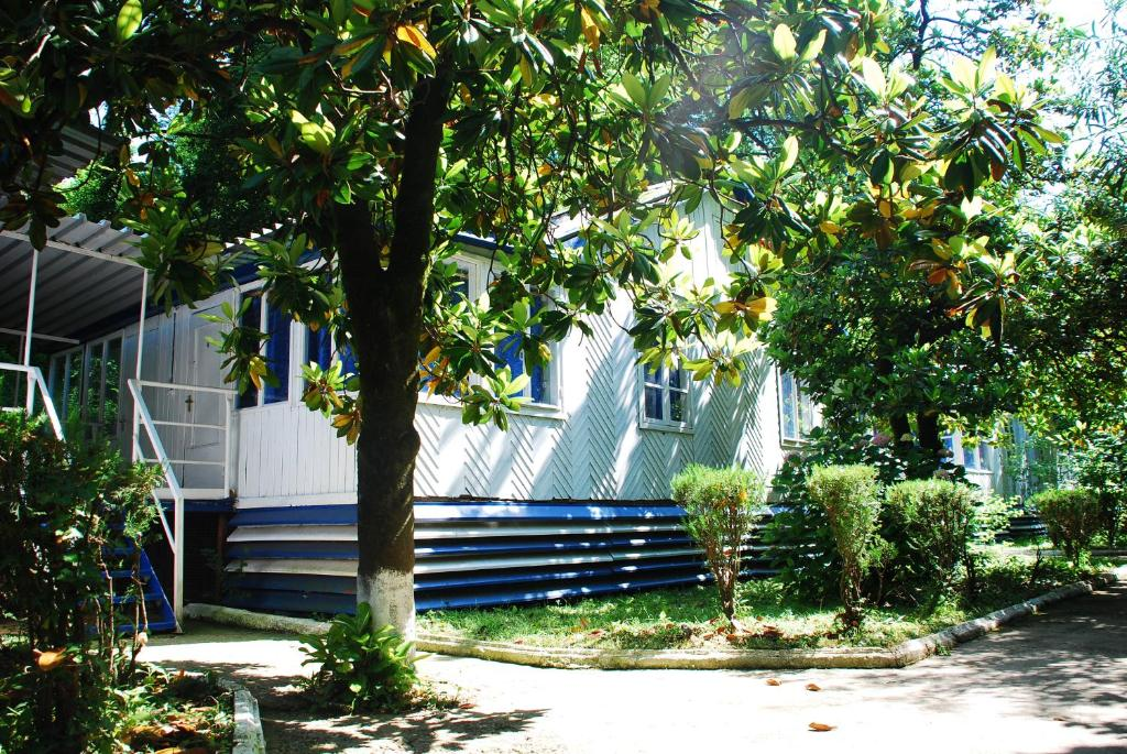 База отдыха Мия, Гудаута, Абхазия
