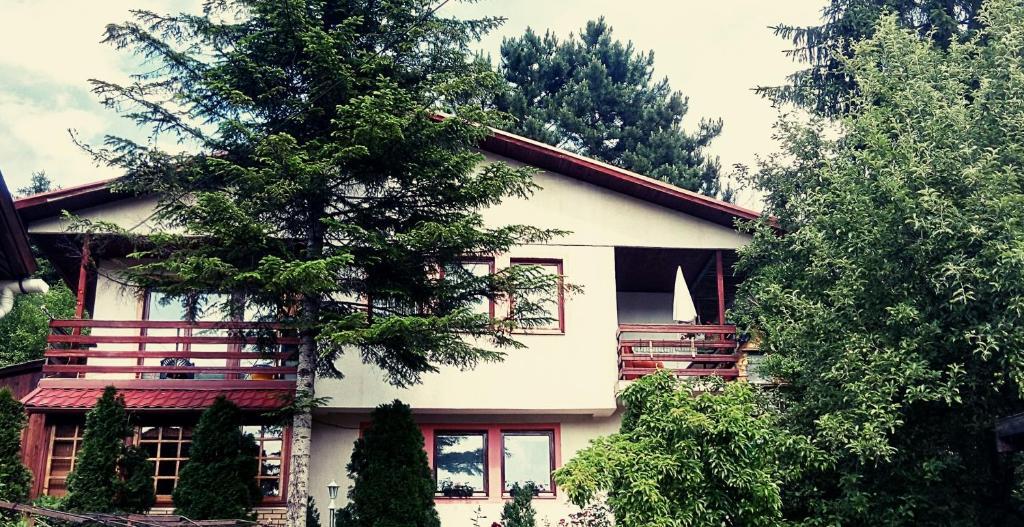 Apartment Borovi