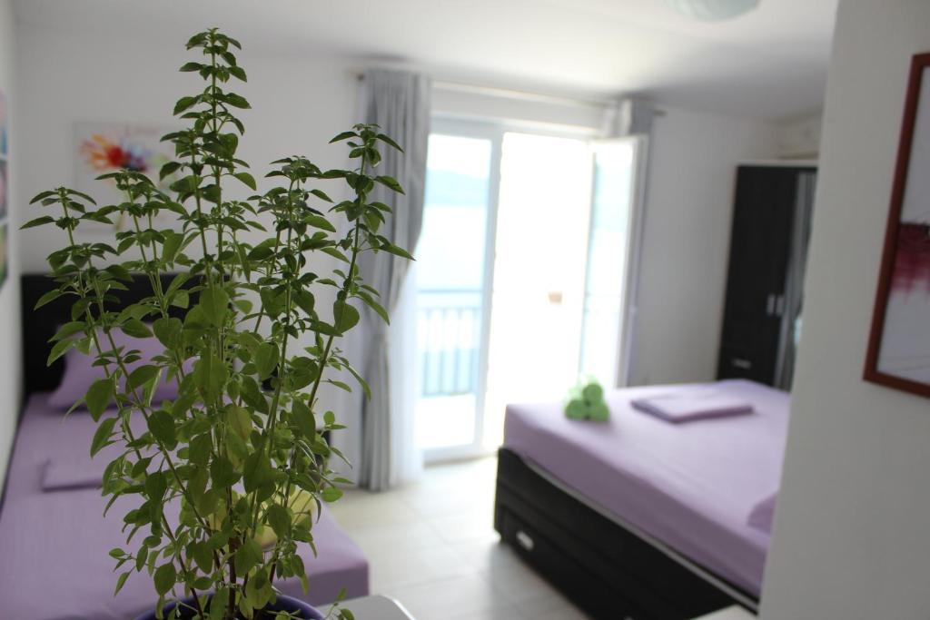 Guest house Put, Неум, Босния и Герцеговина