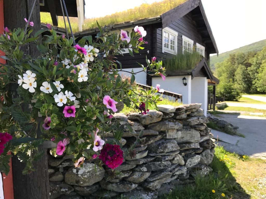 Granmo Camping, Гейрангер, Норвегия