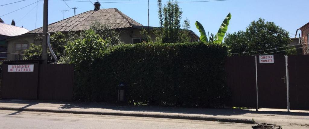 Гостевой дом на Абазгаа 4, Гагра, Абхазия