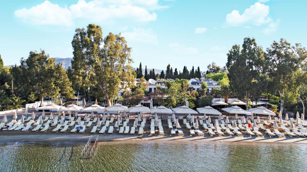 Отель Manuela, Битез, Турция