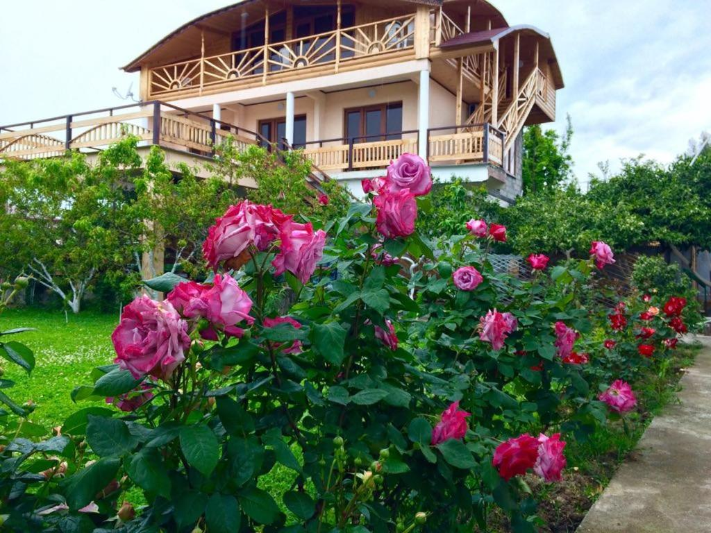 Гостевой дом Пегас, Пицунда, Абхазия