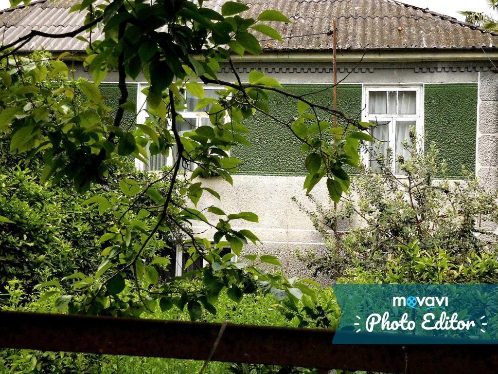 Гостевой дом На Адлейба 77, Сухум, Абхазия