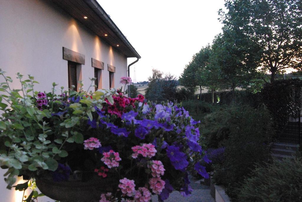 Hostellerie Gilain, Динан, Бельгия