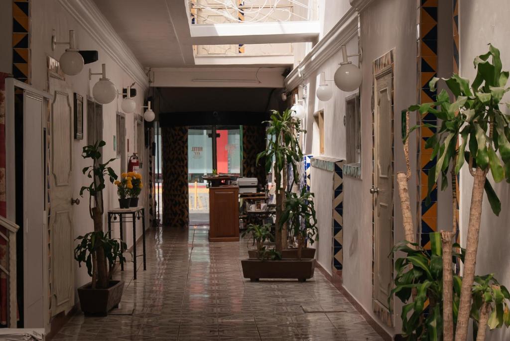 Отель Hotel Condesa Americana Puebla, Пуэбла