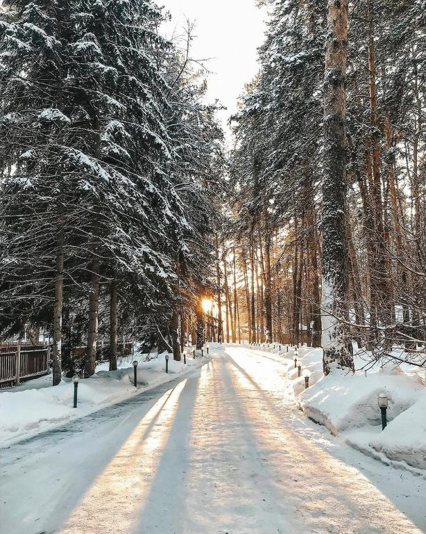 Парк-Отель Лесные дали, Барнаул
