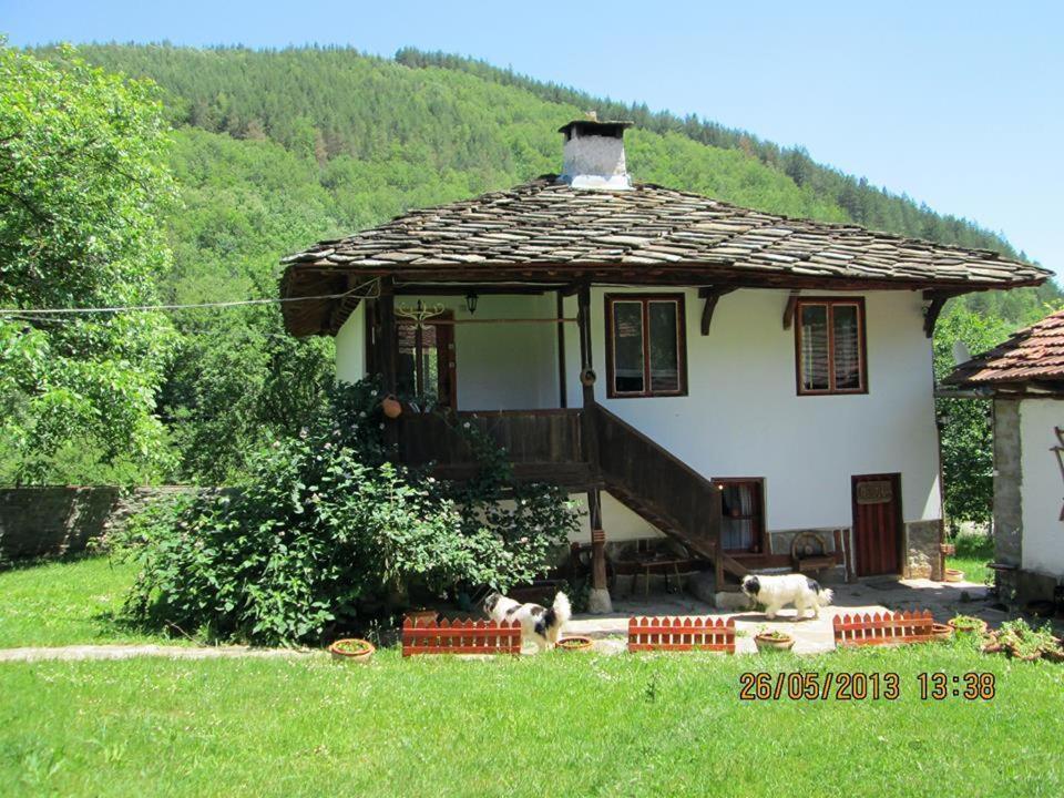 Guest House Four Pines, Бели-Осым, Болгария