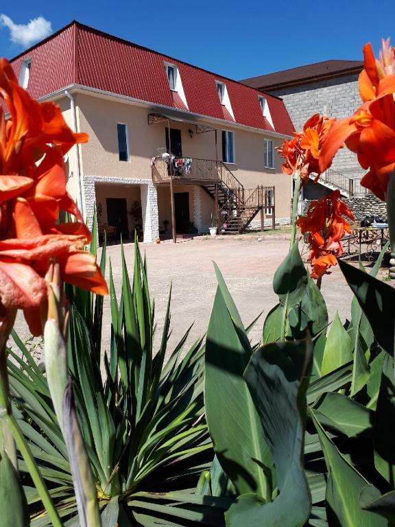 Guest House on Chanba 54, Гагра, Абхазия
