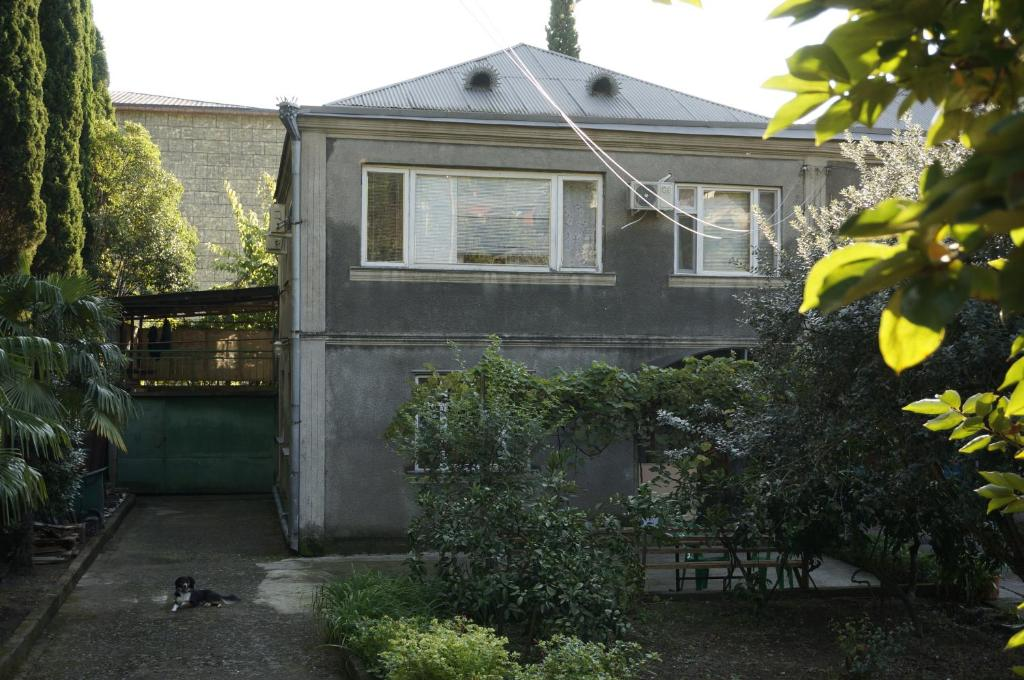 Guest House on Demerjipa 126, Гагра, Абхазия
