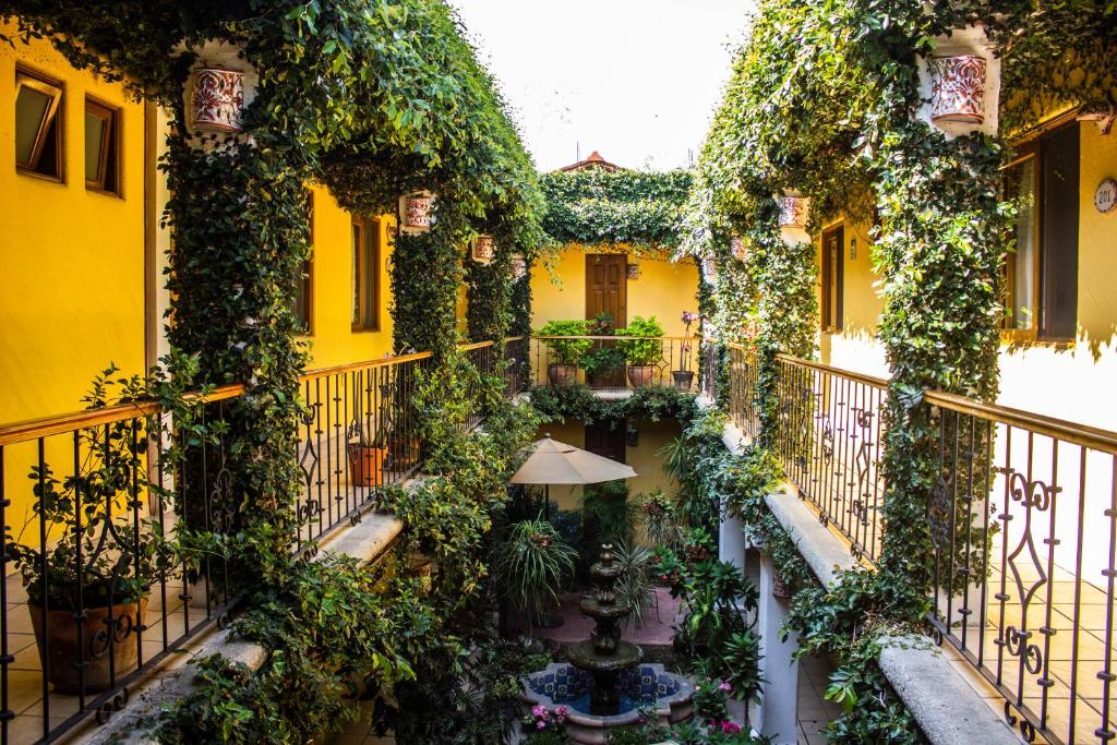 Отель Hotel Dainzu, Оахака-де-Хуарес