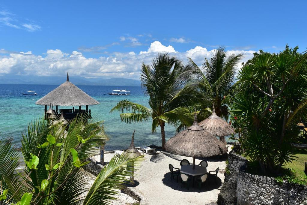Dolphin House Resort Moalboal, Моалбоал, Филиппины
