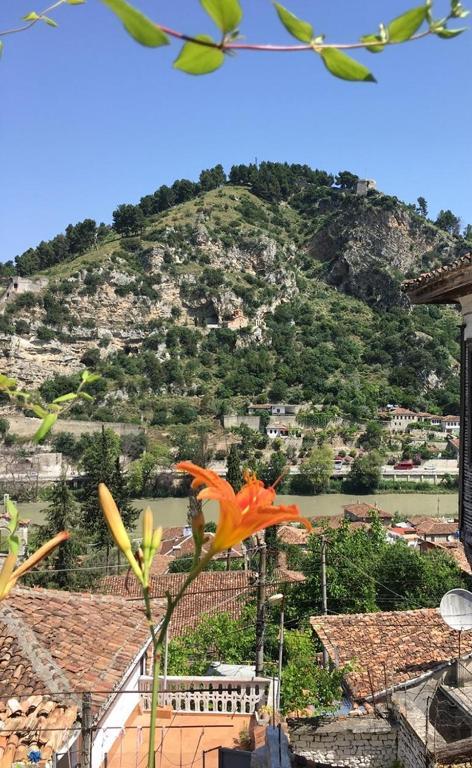 Elisa Villa, Берат, Албания