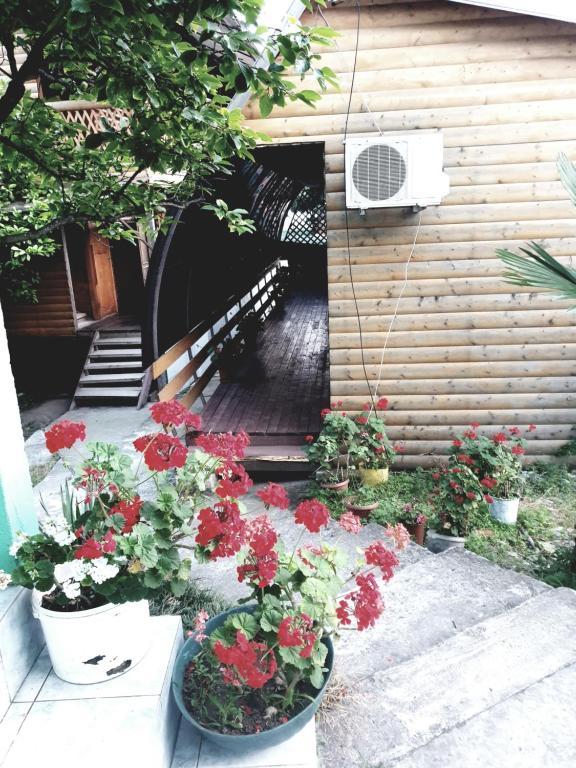 """Гостевой дом """"Даниэлла"""", Пицунда, Абхазия"""