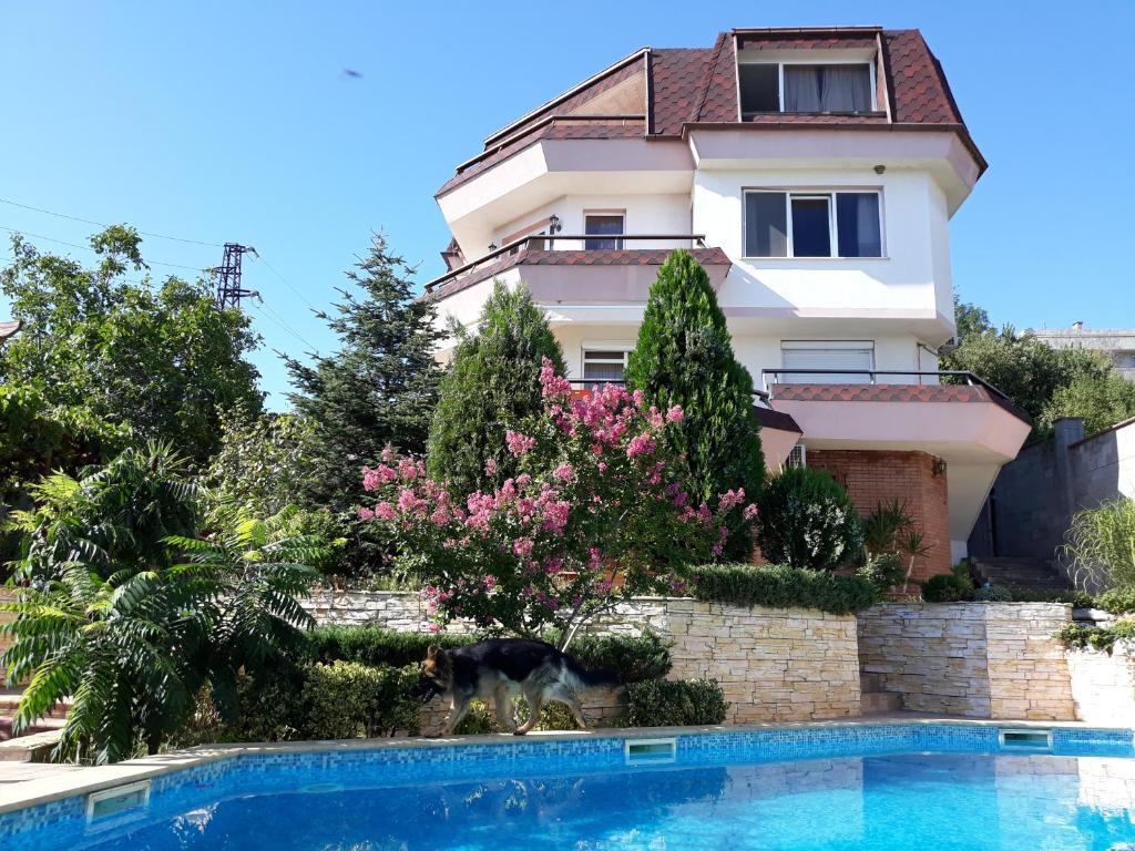 Luxury Villa Sea Dream, Варна, Болгария