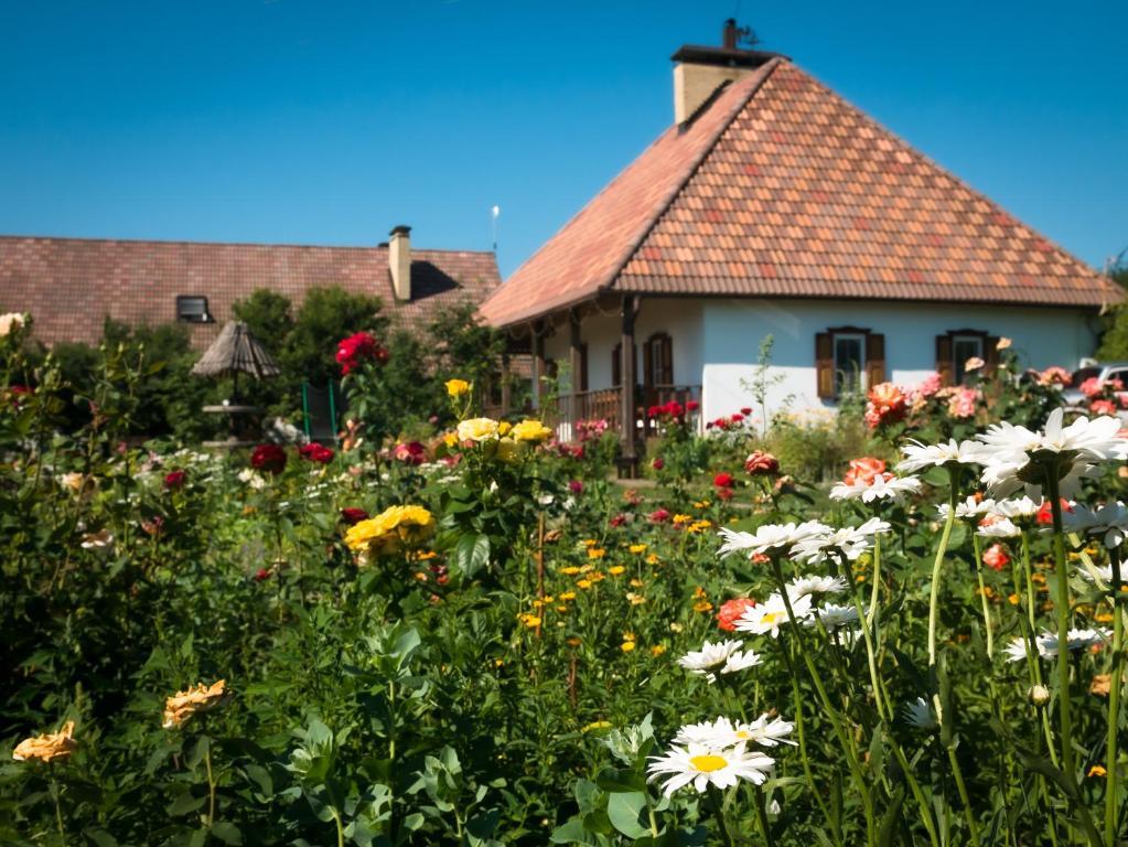 Гостевой дом Весела садыба, Веселовка