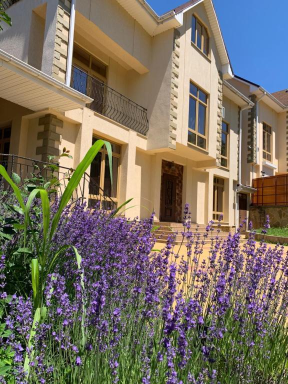 Отель Анна-Виктория, Лоо