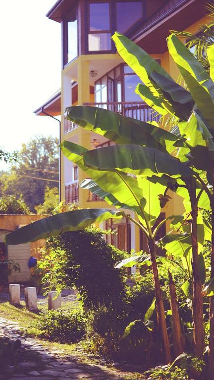 Гостевой дом На Лесной 5, Пицунда, Абхазия