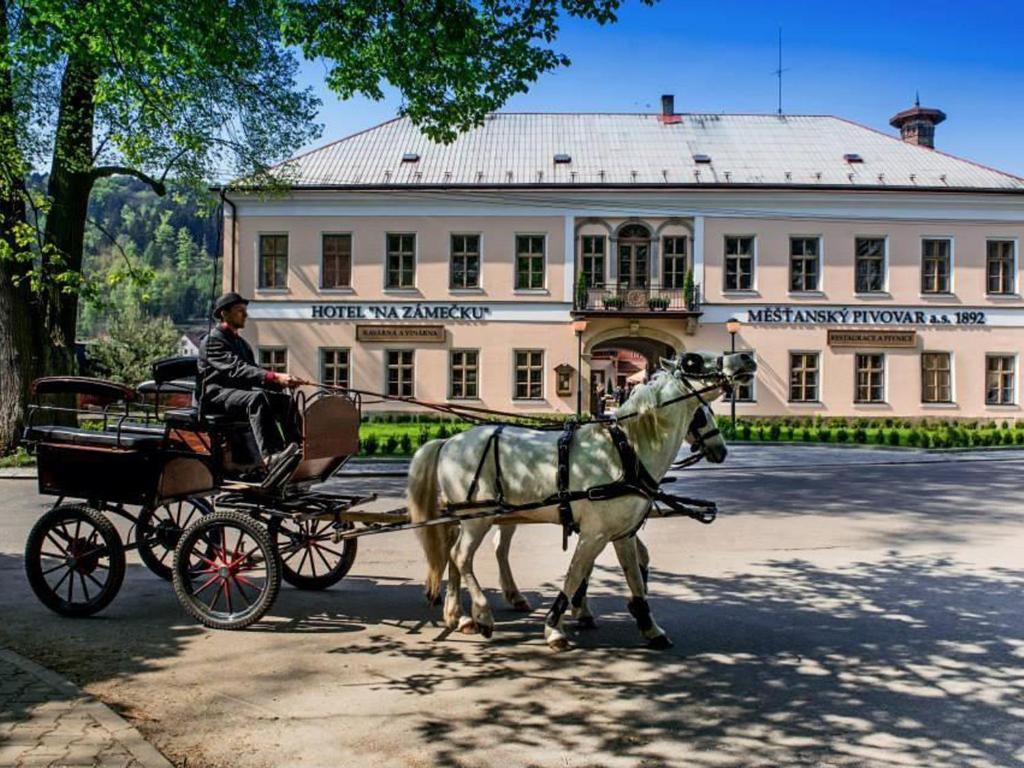 Отель Na Zámečku, Усти-над-Орлици