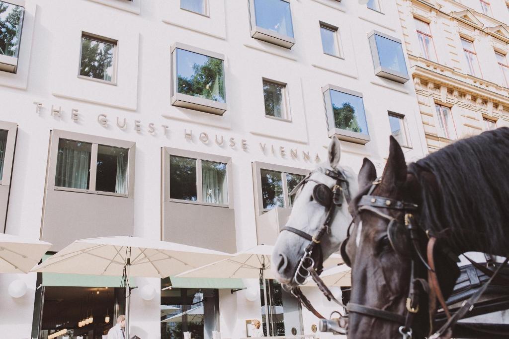 The Guesthouse Vienna, Вена, Австрия