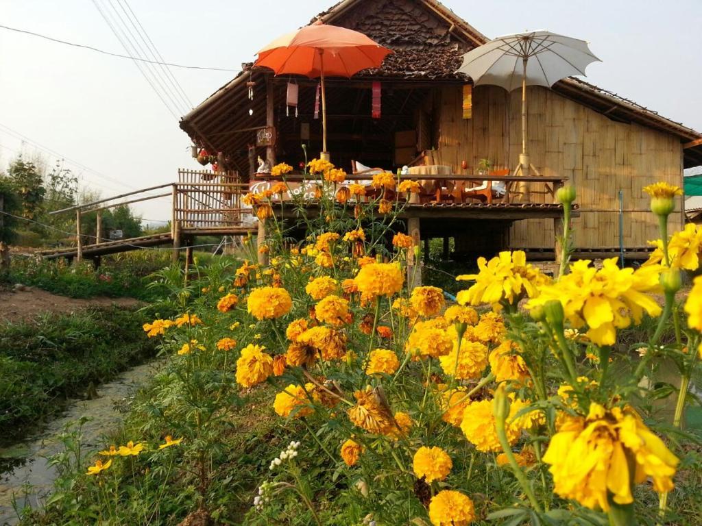 Курортный отель Tulip Resort Pai, Пай