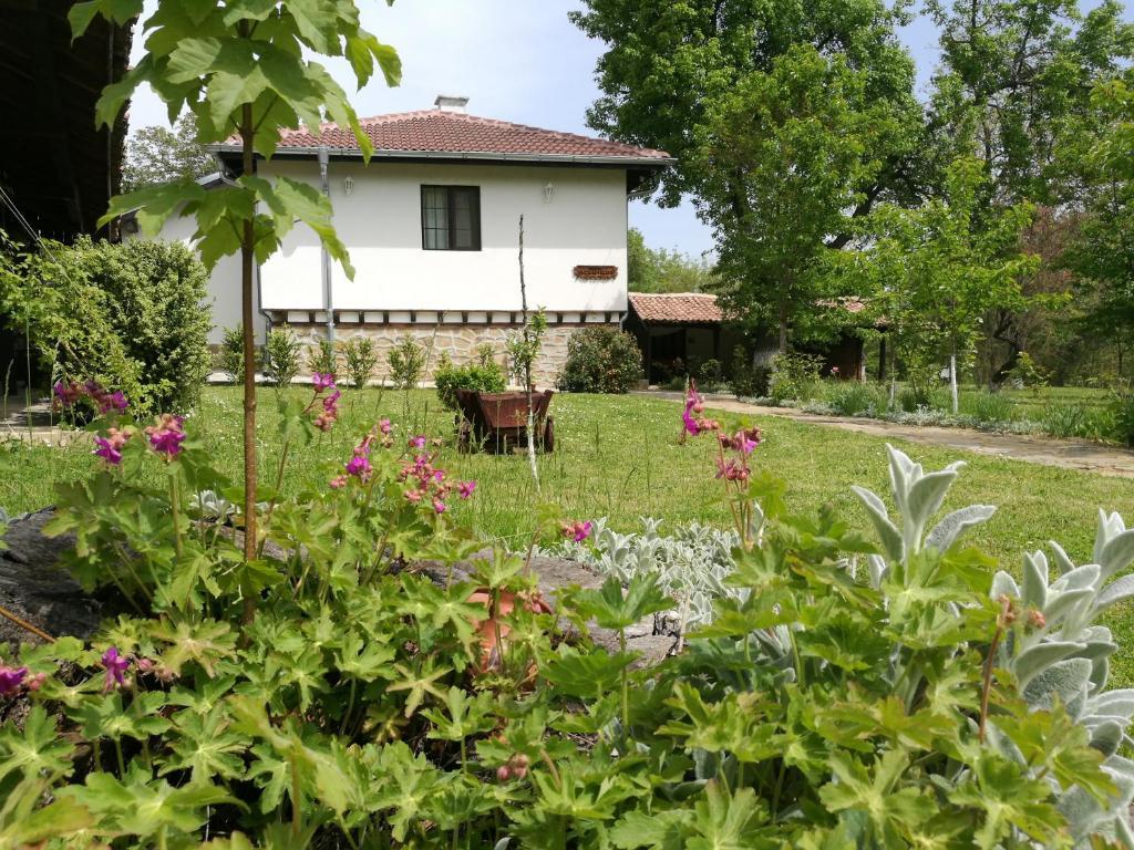 Complex Ovchaga, Аспарухово (Варненская область), Болгария