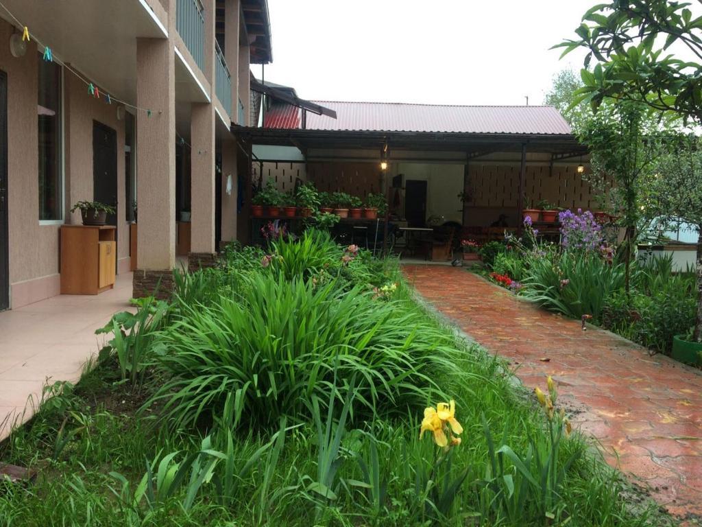 Guest House Allochka, Пицунда, Абхазия