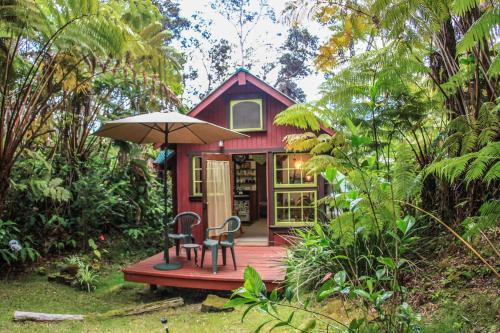 福尼浩罗-浪漫热带雨林旅馆