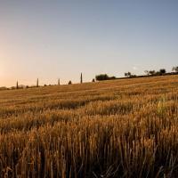Agriturismo Il Tiro